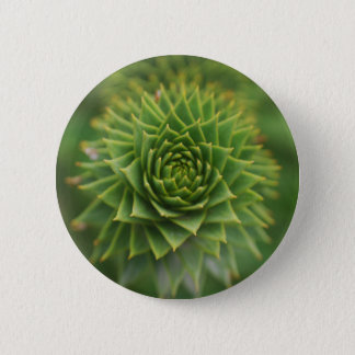 the geometry of nature 2 inch round button