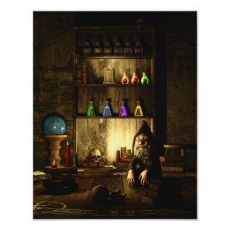 The Gnome Magus Canvas/Poster Print