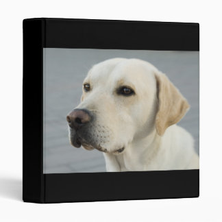 The Golden Labrador Retriever Binder