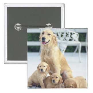 The Golden Retriever is a relatively modern and 2 Inch Square Button