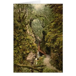 The Gorge, Lydford, Devon, England Card