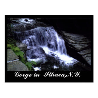THE GORGES OF ITHACA, N.Y. postcard
