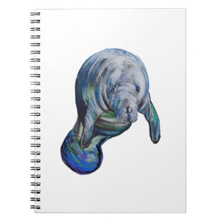 THE GRACEFUL WAY NOTEBOOKS