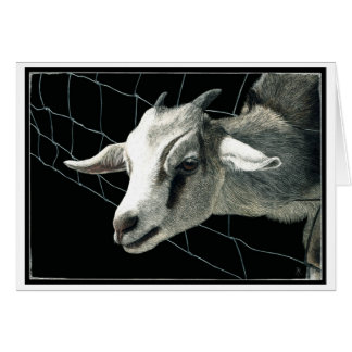 """""""The Grass is Always Greener"""" - Goat Card"""