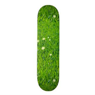 The Grass is Greener Custom Skateboard