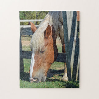 The Grass Is Greener On The Other Side Horse Jigsaw Puzzle