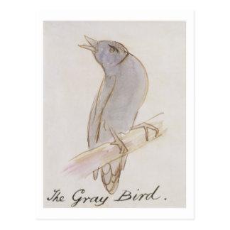 The Gray Bird, from 'Sixteen Drawings of Comic Bir Postcard