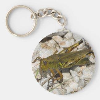 the Great Grasshopper  ! Keychain