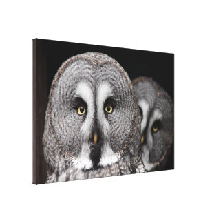 The-great-grey-owl Canvas Print
