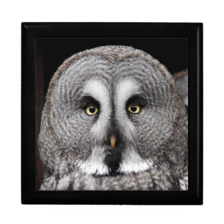 The-great-grey-owl Gift Box