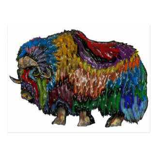 THE GREAT MUSKOX POSTCARD