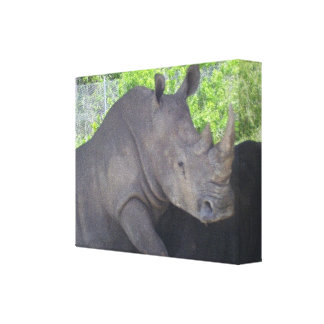 THE GREAT RHINO CANVAS PRINT