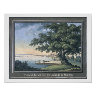 The Great Tree of Kingston with a view of Philadel Poster