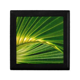 The green fan gift box