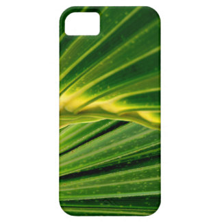 The green fan iPhone 5 cover