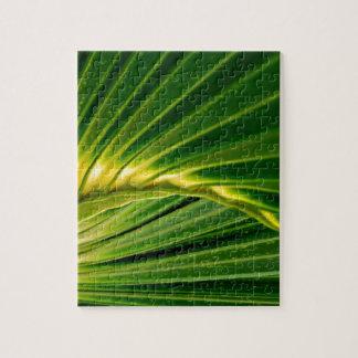 The green fan jigsaw puzzle