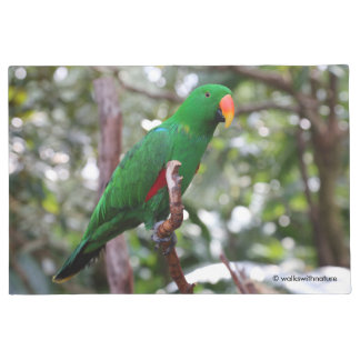 """The Green Orator"" Eclectus Parrot Doormat"