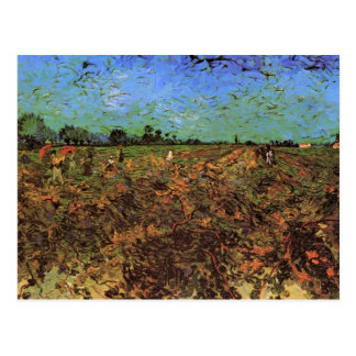 The Green Vineyard by Vincent van Gogh Postcard