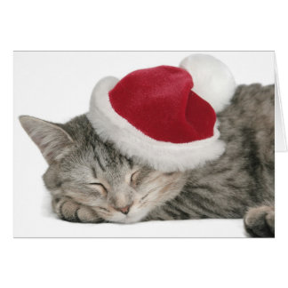The Grey Cat Sleeps In A New Year's Cap Card