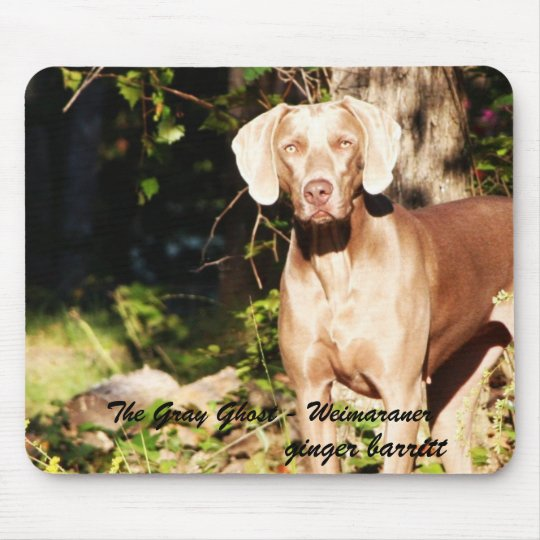 The Grey Ghost - Weimaraner, ginger ... Mouse Pad