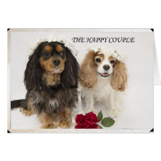 The Happy Couple Cavalier King Charles Spaniel Card