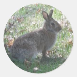 The Happy Rabbit Classic Round Sticker