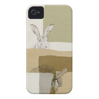 The Hare and the Tortoise An Aesop's Fable iPhone 4 Cover