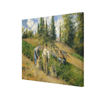 The Harvest, Pontoise Canvas Print