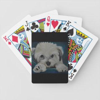 The Havanese Poker Deck