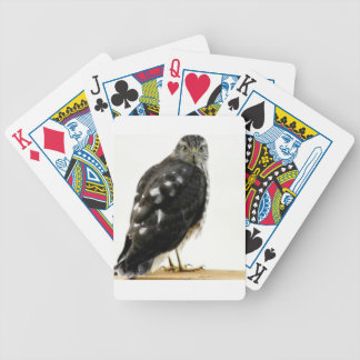 The Hawk Bicycle Playing Cards