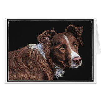 """The Herder"" - Border Collie Card"