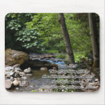 The Hiding Place Mouse Pad
