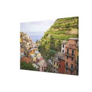 the hillside village of Manarola-Cinque Terre, Canvas Prints