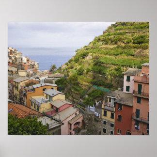 the hillside village of Manarola-Cinque Terre, Poster