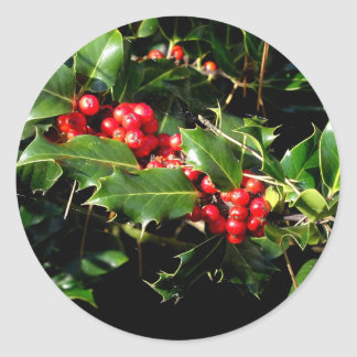 The Holly And The Ivy Classic Round Sticker