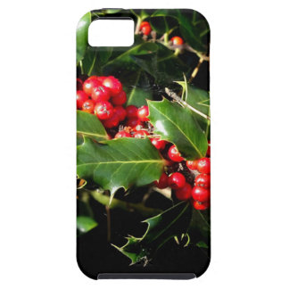 The Holly And The Ivy iPhone 5 Cover