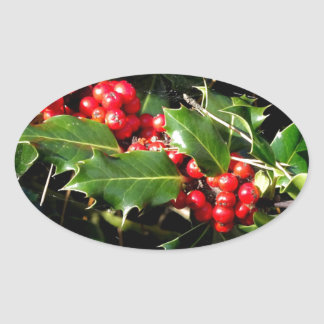 The Holly And The Ivy Oval Sticker