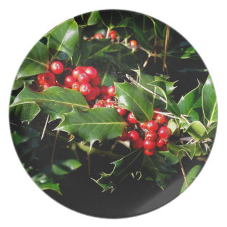 The Holly And The Ivy Plate