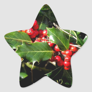 The Holly And The Ivy Star Sticker
