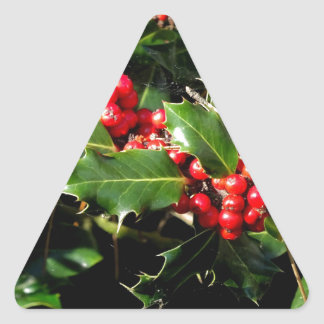 The Holly And The Ivy Triangle Sticker