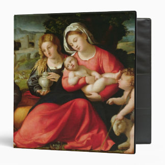 The Holy Family, c.1508-12 (oil on canvas) Vinyl Binder