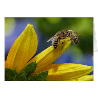 The Honey Bees Card