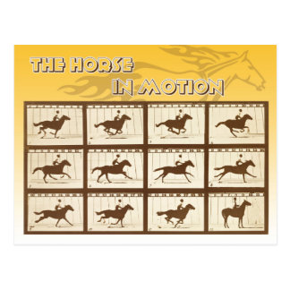 The Horse in Motion Postcard