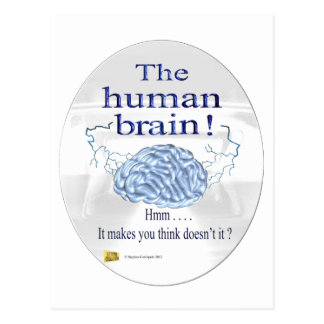 The human brain postcard