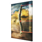 The human spine canvas print