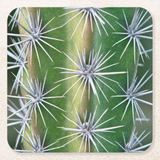 The Huntington Botanical Garden, Octopus Cactus Square Paper Coaster