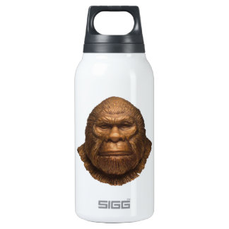 THE IMAGE OF INSULATED WATER BOTTLE