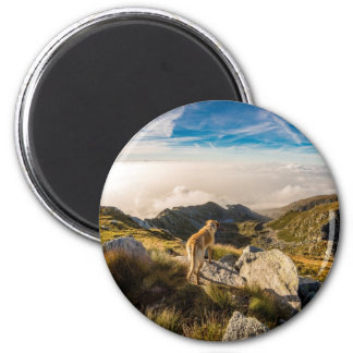 The journey 2 inch round magnet