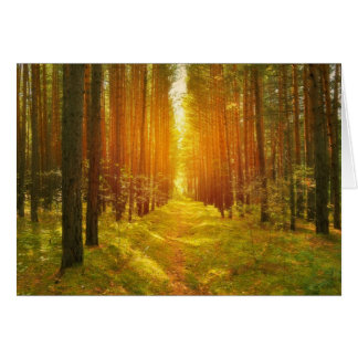 The journey ahead path in the woods card
