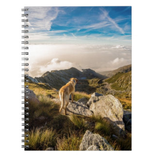 The journey notebook